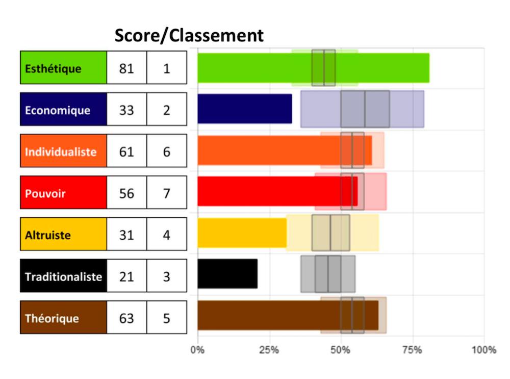 Exemple d'un score obtenu de l'Analyse des Forces Motrices